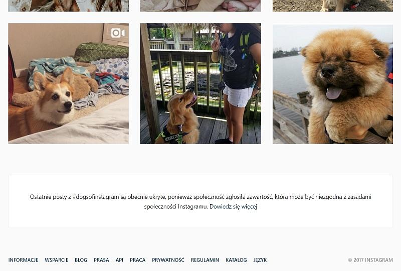 instagram-zakazane-hashtagi-komunikat